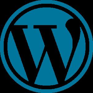 wordpress 3 300x300 - wordpress (3)